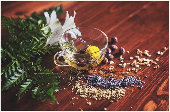 Dlaczego warto regularnie pić herbaty ziołowe?